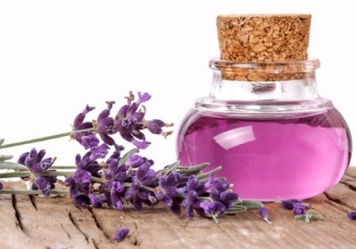 Lavender, wellness, isolated